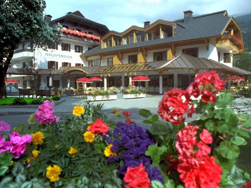 Ferienpark Waldpension Putz Berg im Drautal, Austria