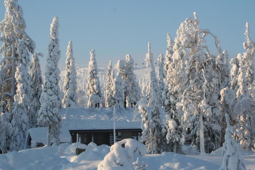 Ruka Inn under vintern