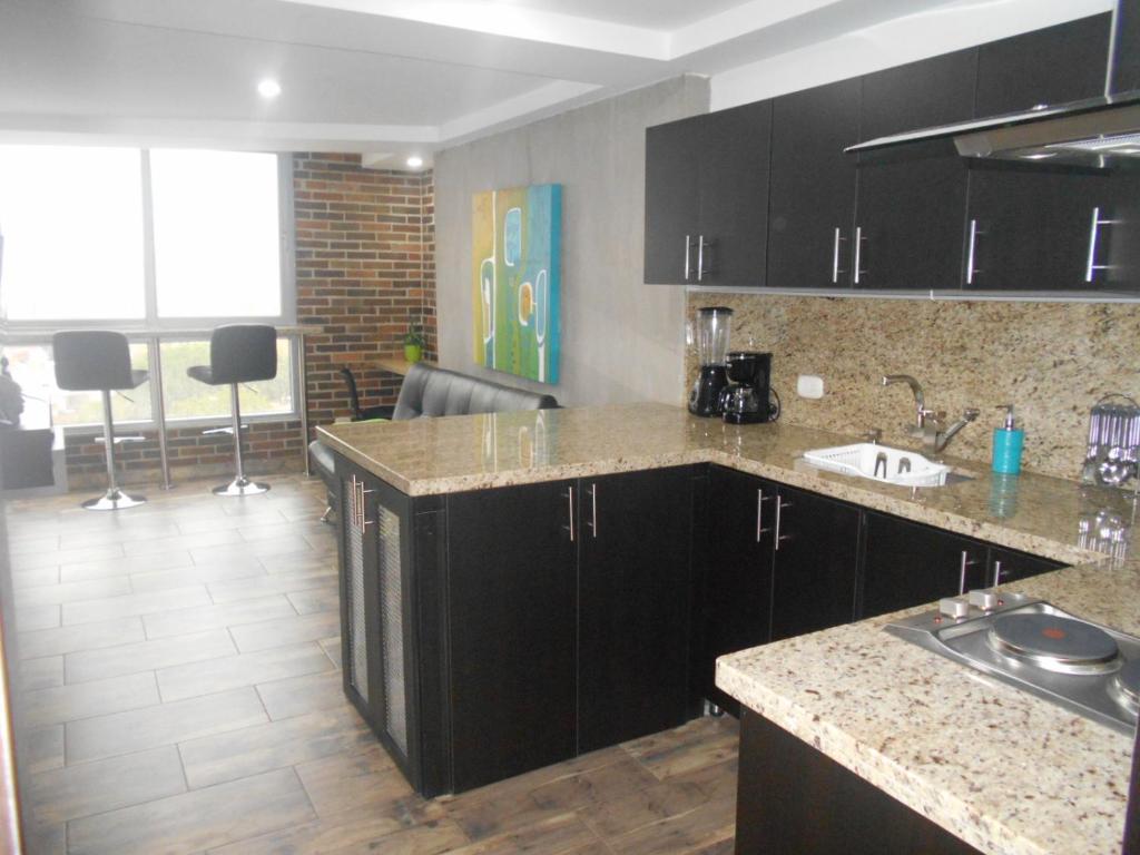 A kitchen or kitchenette at Apartasuites AV
