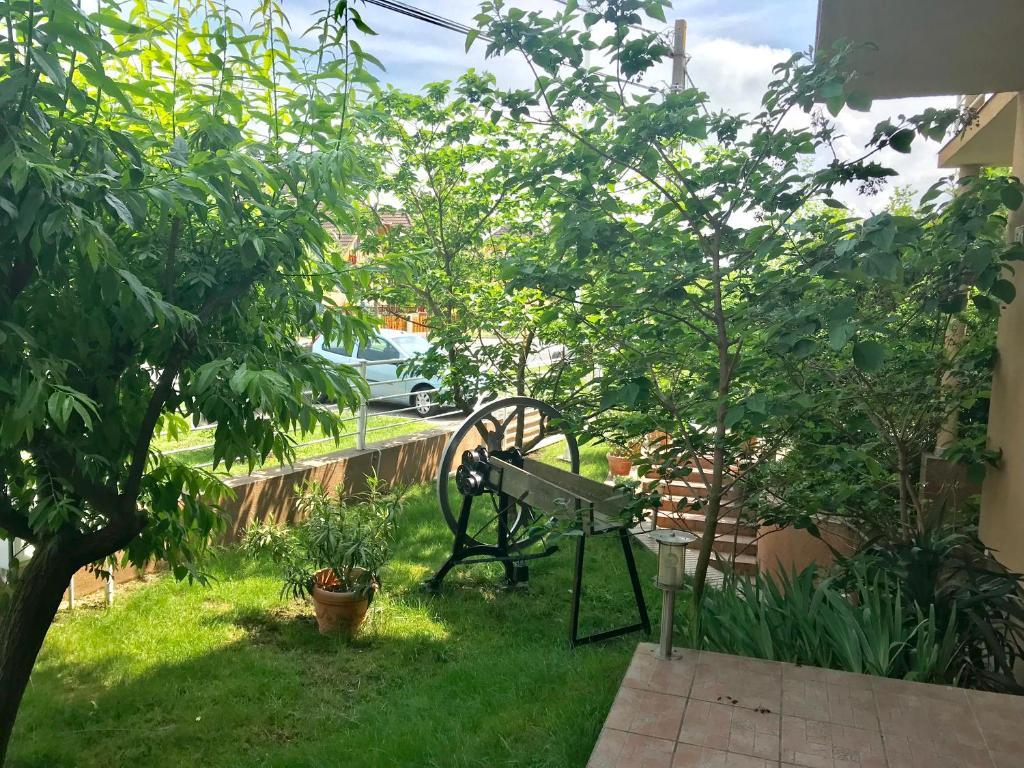 A garden outside Barki Apartman