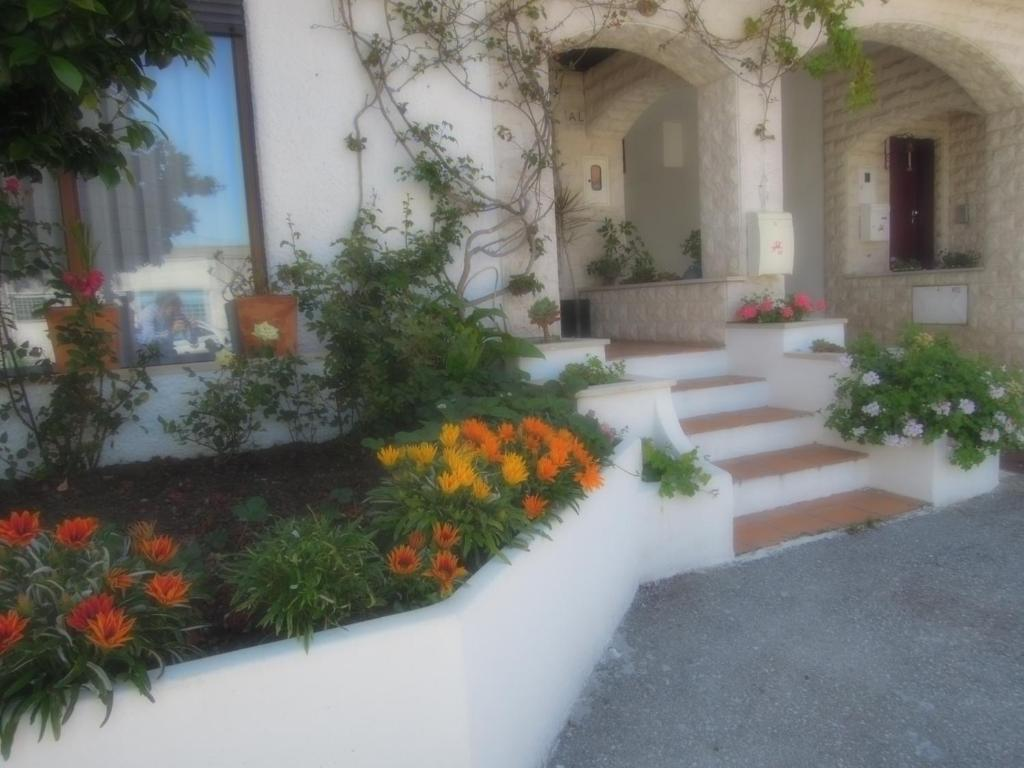 Um jardim em Sótão do avô