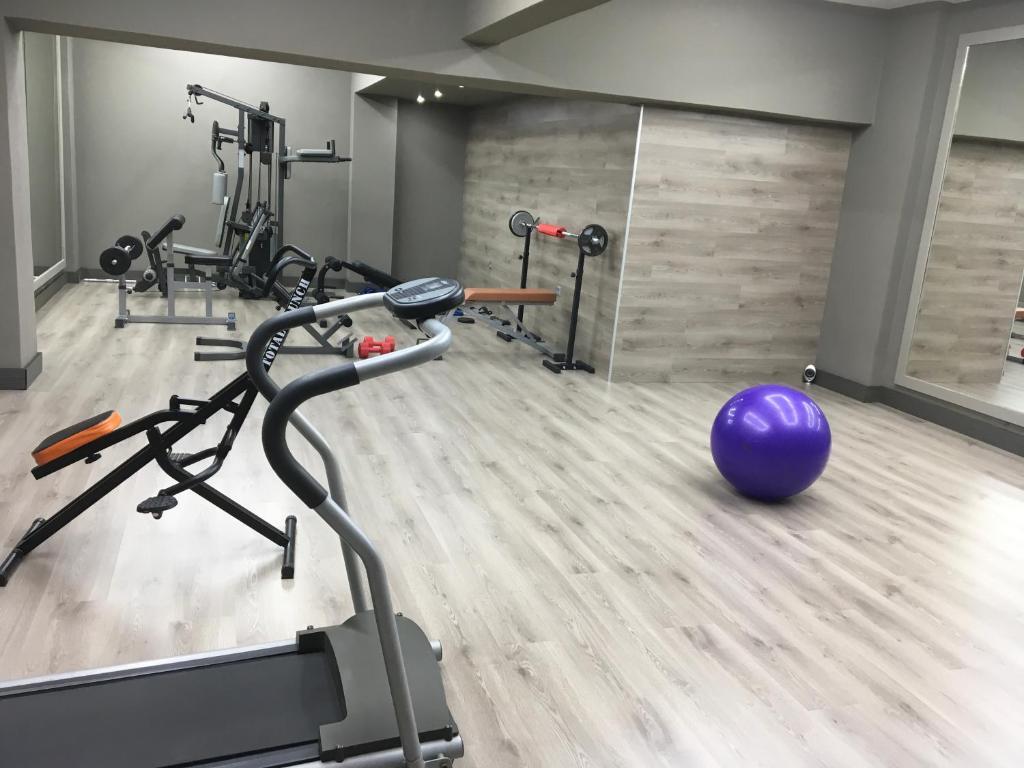 Γυμναστήριο ή/και όργανα γυμναστικής στο Studios Asteria