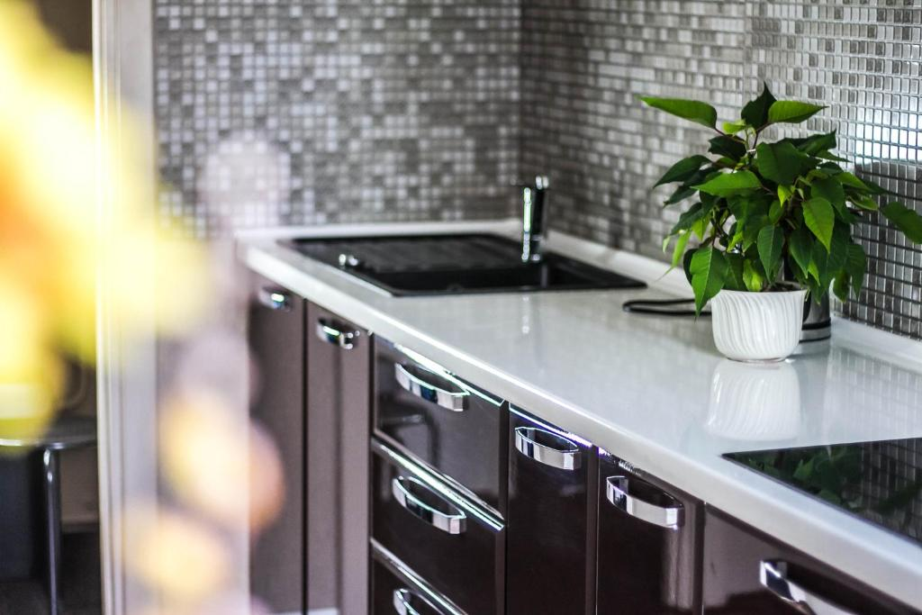 Virtuve vai virtuves aprīkojums naktsmītnē Z - apartment