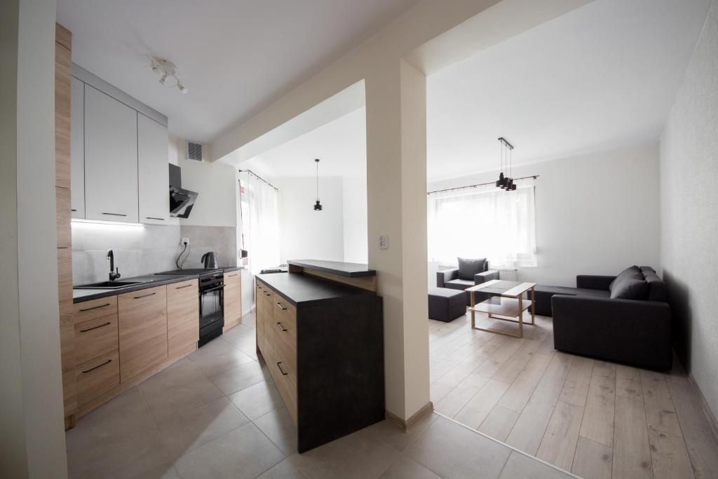 A kitchen or kitchenette at Apartament Zebcowska