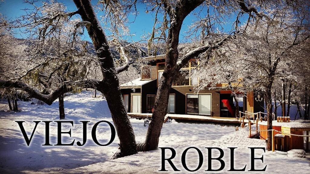 El Viejo Roble during the winter