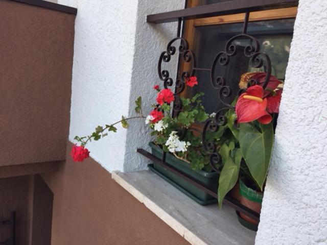 Casa Vacanze Valentina Dolomiti
