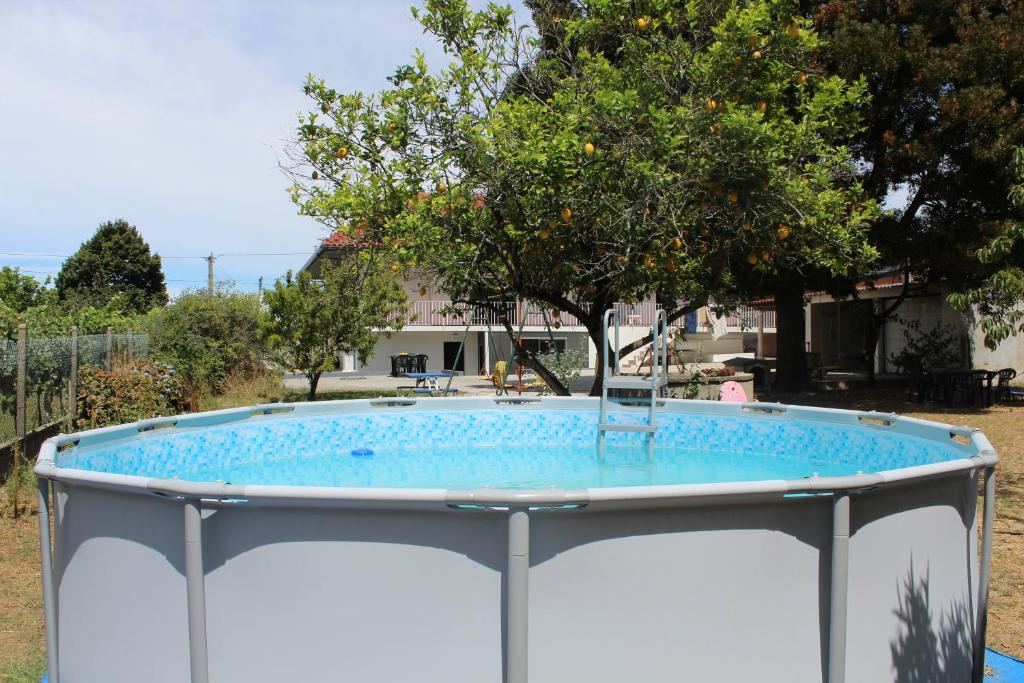 The swimming pool at or near Fino Seixo