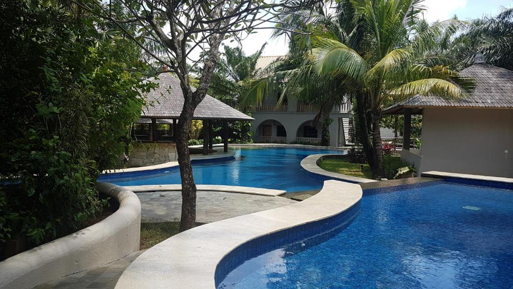 The swimming pool at or close to Coconut lodge