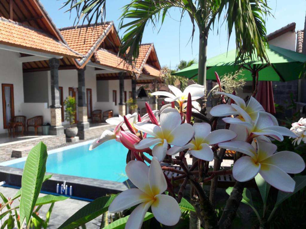 The swimming pool at or near Miko Bali Bungalow