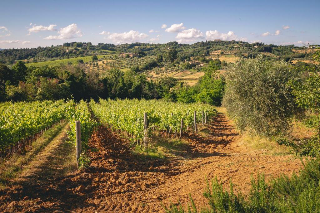 Agriturismo Borgo Villa Certano