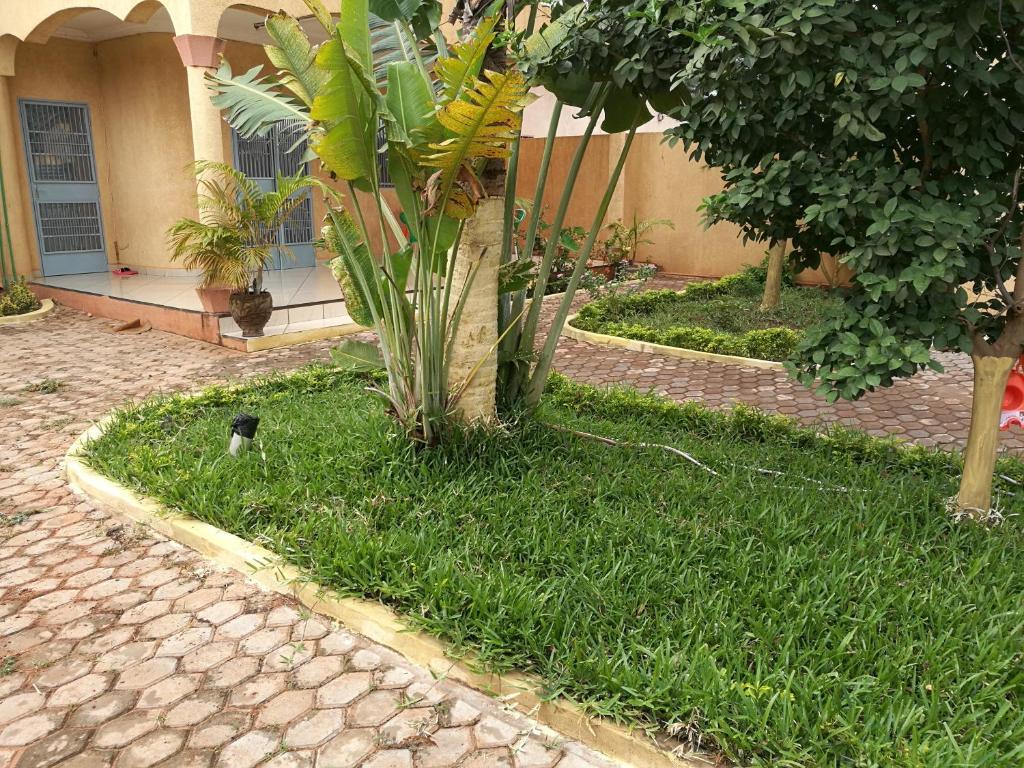 A garden outside Bobo Guesthousse