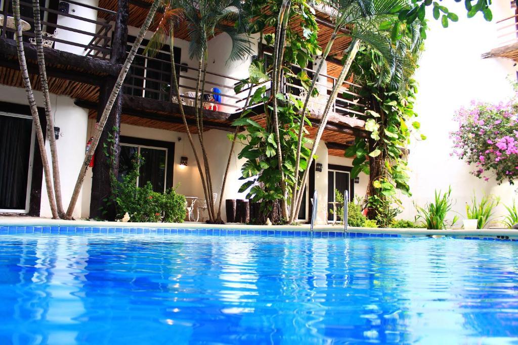 The swimming pool at or near Hotel Maya del Carmen