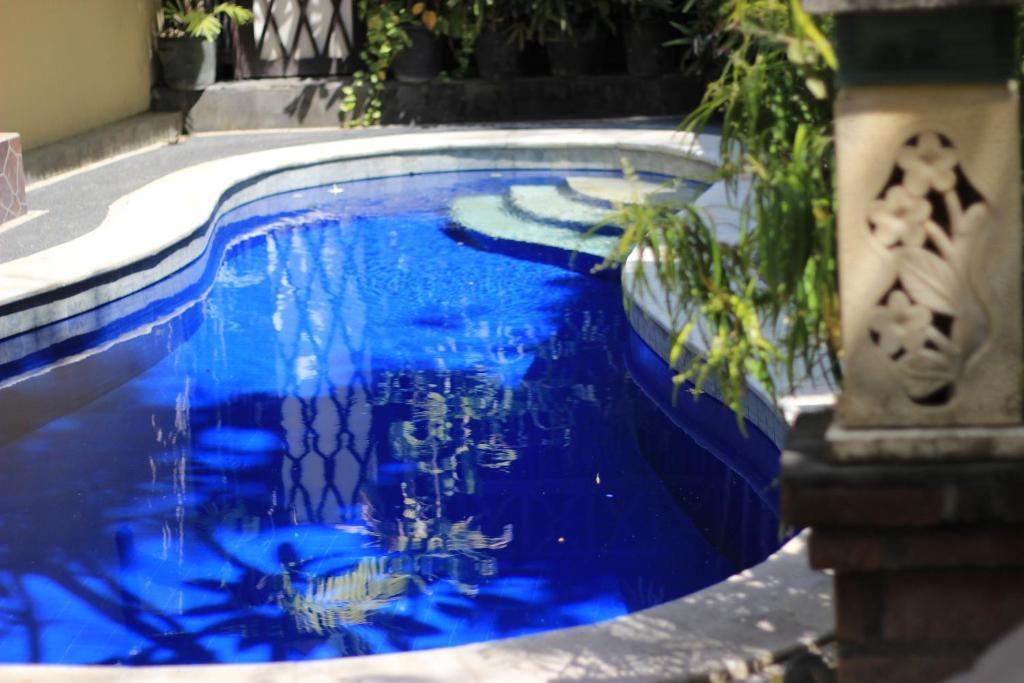 Der Swimmingpool an oder in der Nähe von Jambu Inn