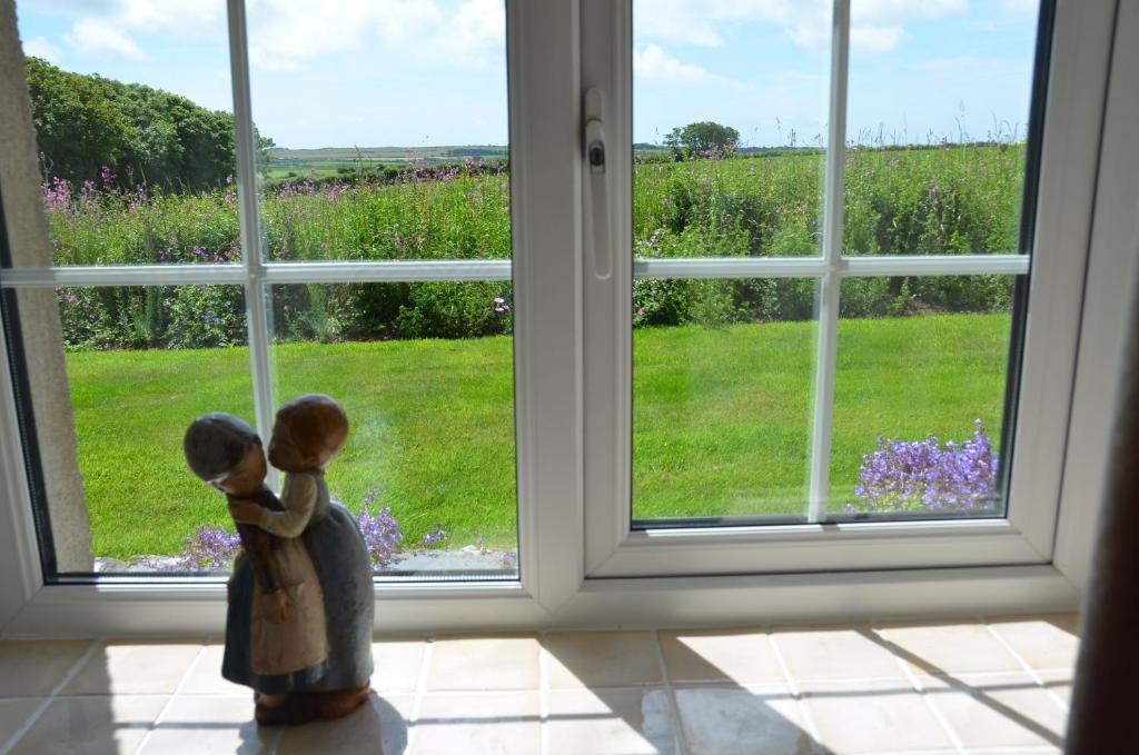 Snowdrop cottage @ Ty-llwyd