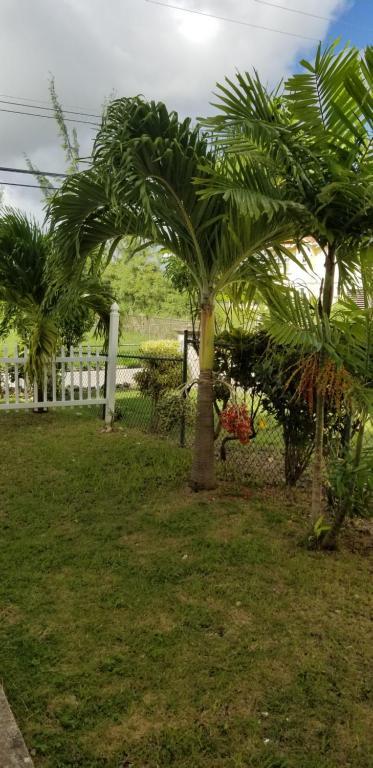 A garden outside Cynson Villa Holiday Accommodations