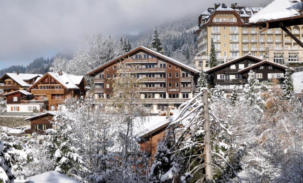 Hotel Maya Caprice during the winter