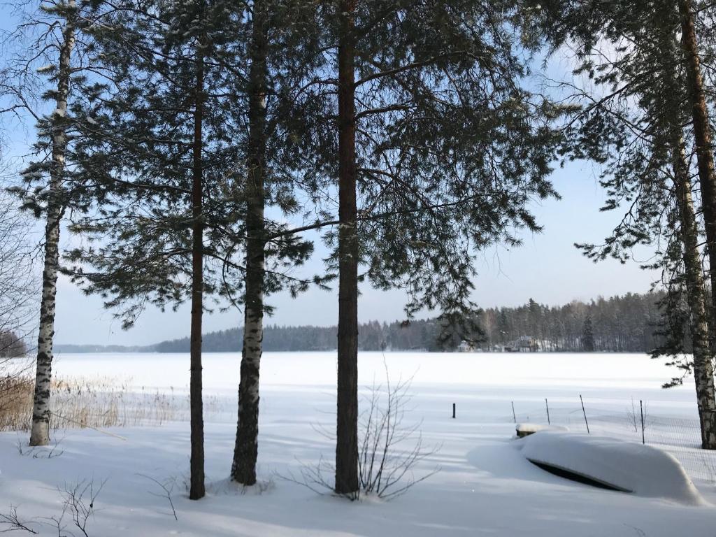 Secret Lake Cottage during the winter