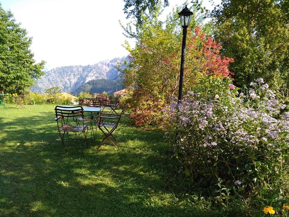 Κήπος έξω από το Xenonas Aloni