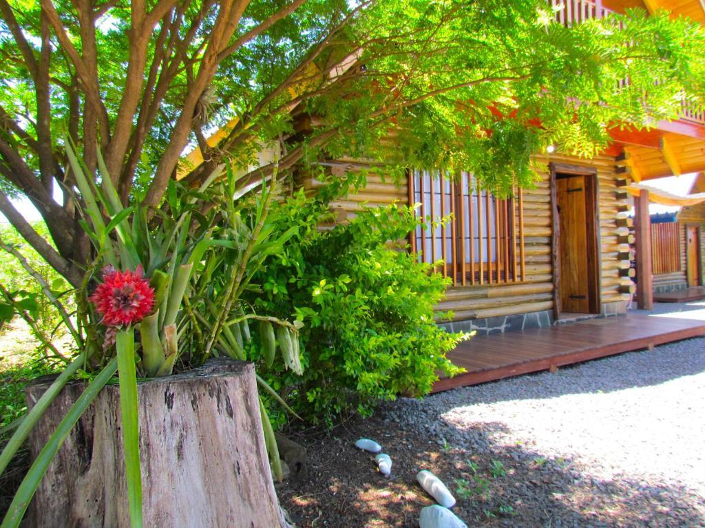 Un jardín fuera de Cabañas Esencias Mocona