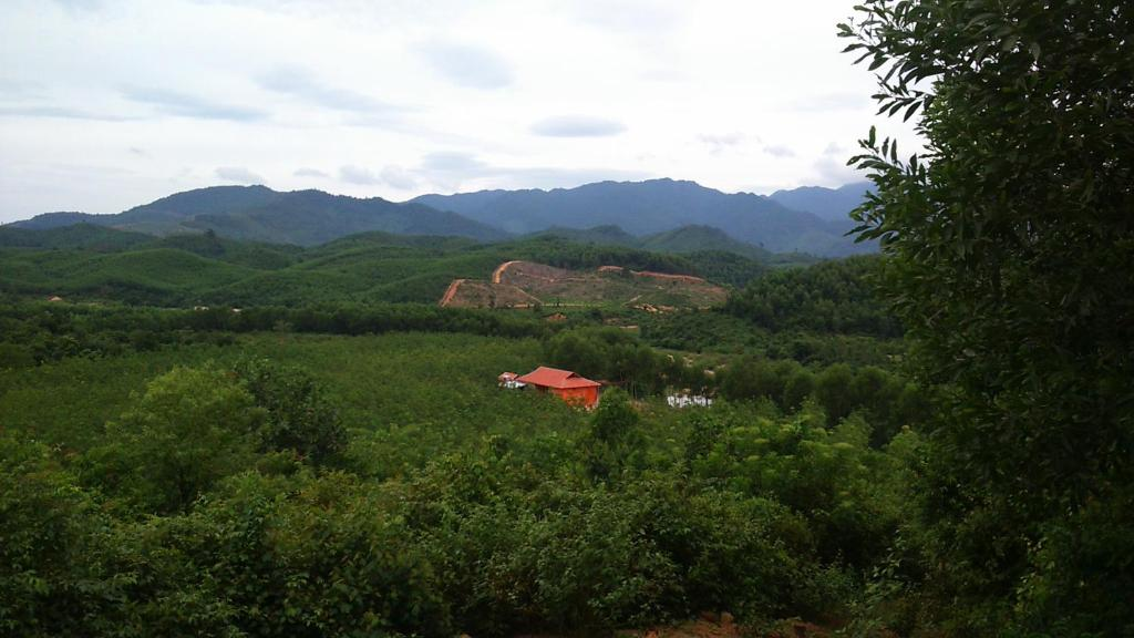 Natural landscape near the farm stay