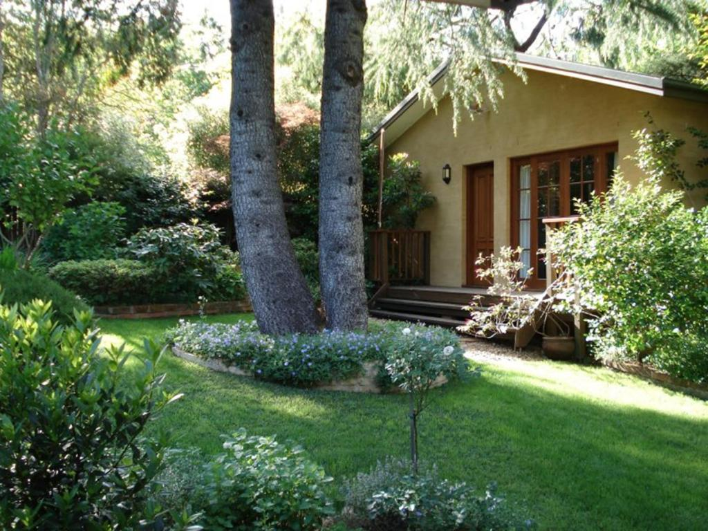 A garden outside Dukis House