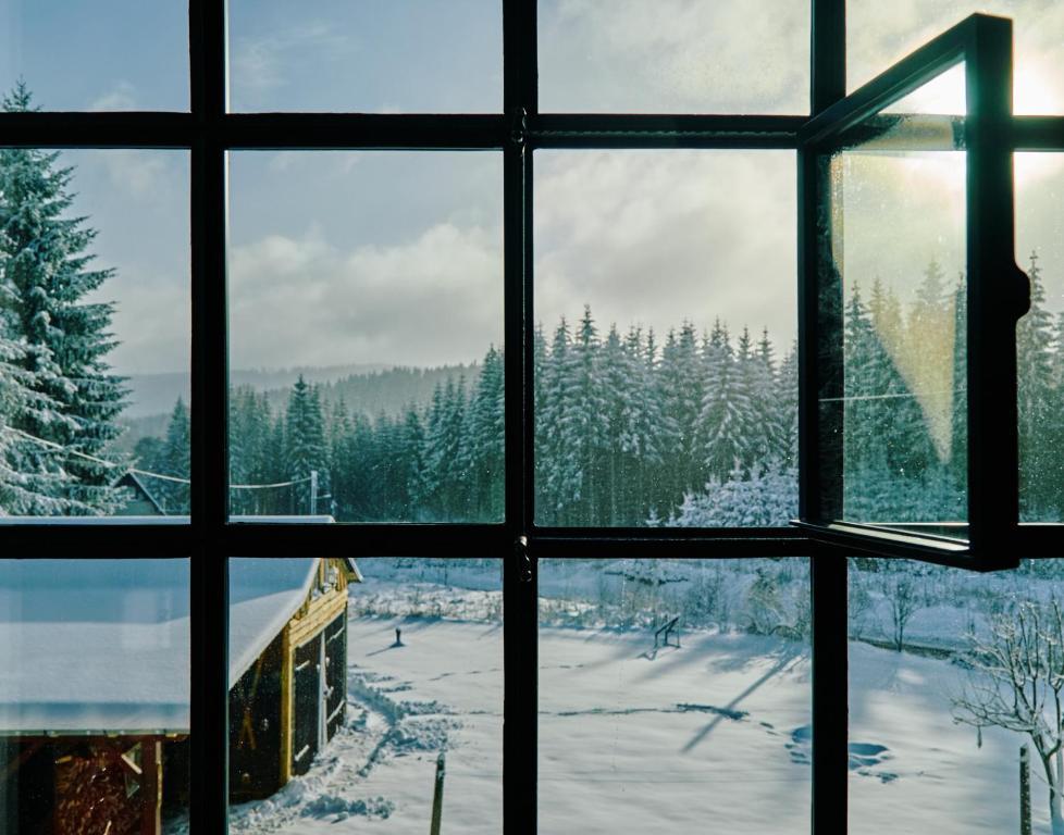 Blickinsfreie im Winter