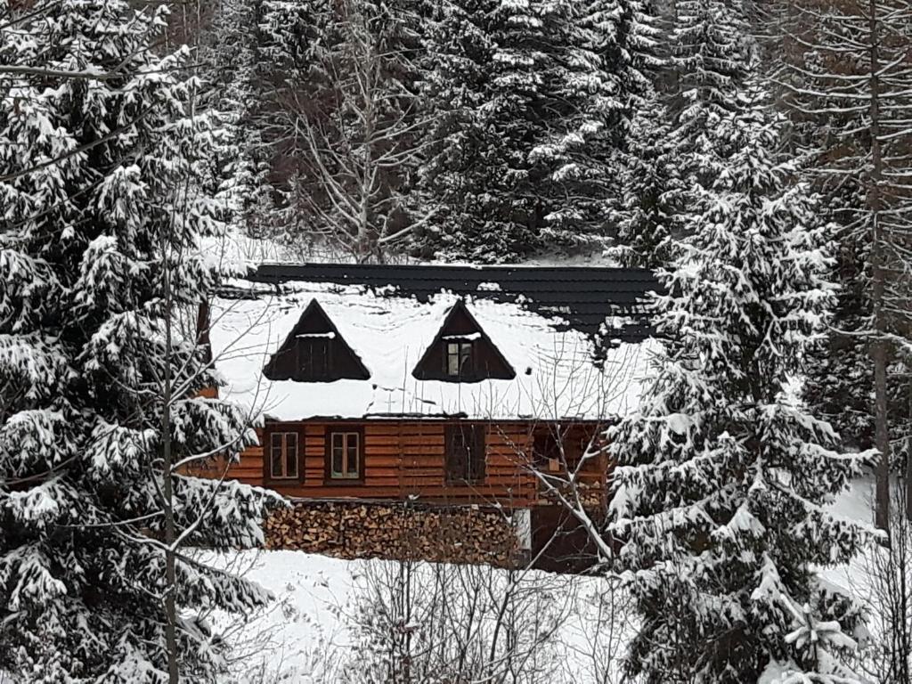 Obiekt Bacówka w sercu gór - dom z bali w Gorcach zimą