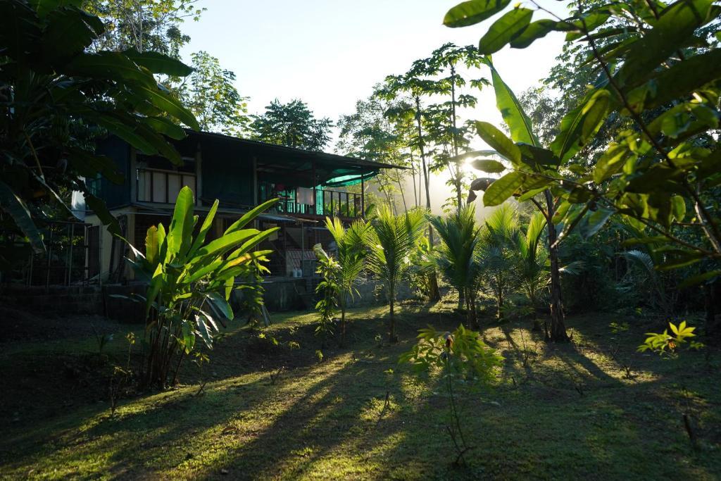 A garden outside Utopia Tica, Sustainable Lodge