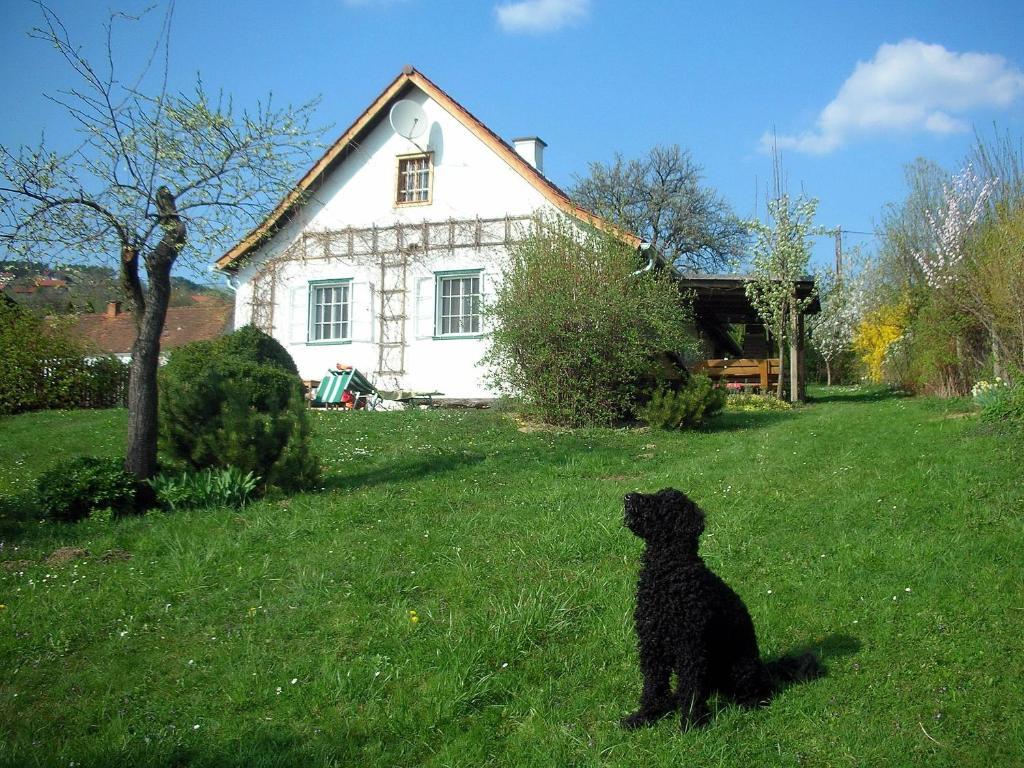 Beim Schachnerhaus