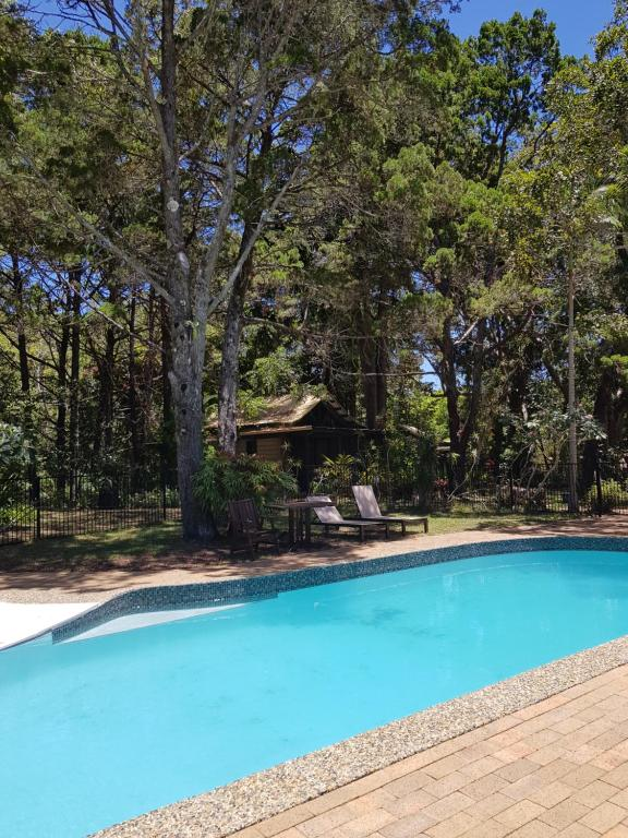 The swimming pool at or near Byron Bay Rainforest Resort
