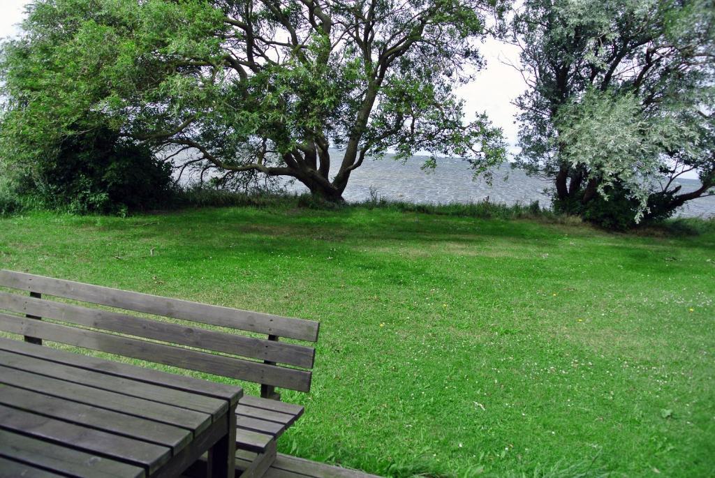 En trädgård utanför Fotevikens Stugby