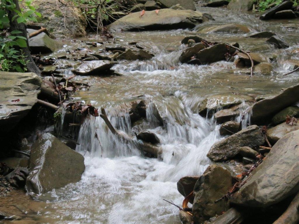 Buckberry Creek Chalet