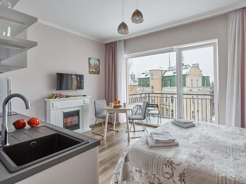 Kuchyň nebo kuchyňský kout v ubytování WITH LOVE Marienbad Ap. Dvorakova