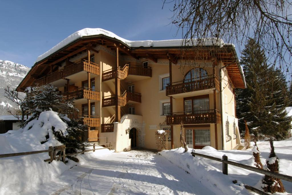 Soldanella by Hotel Adula during the winter