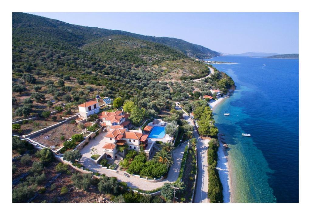 Alonissos beach villa 5 steps away from the sea