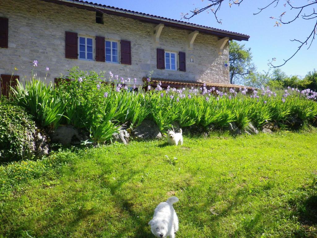 A garden outside Chambre d'hôtes La Haie Fleurie