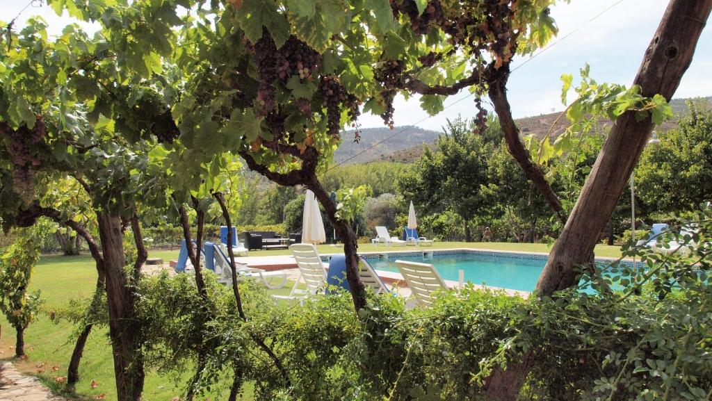 The swimming pool at or near Casa dos Araújos