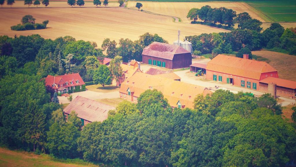 Blick auf Schickes Landhaus in Koselau&Ostsee aus der Vogelperspektive