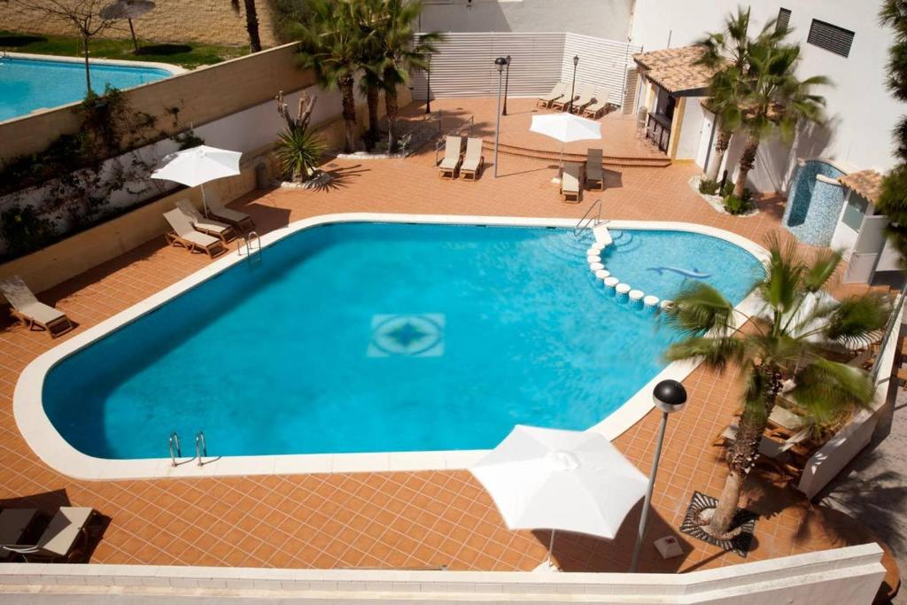 A view of the pool at La Familia Gallo Rojo or nearby