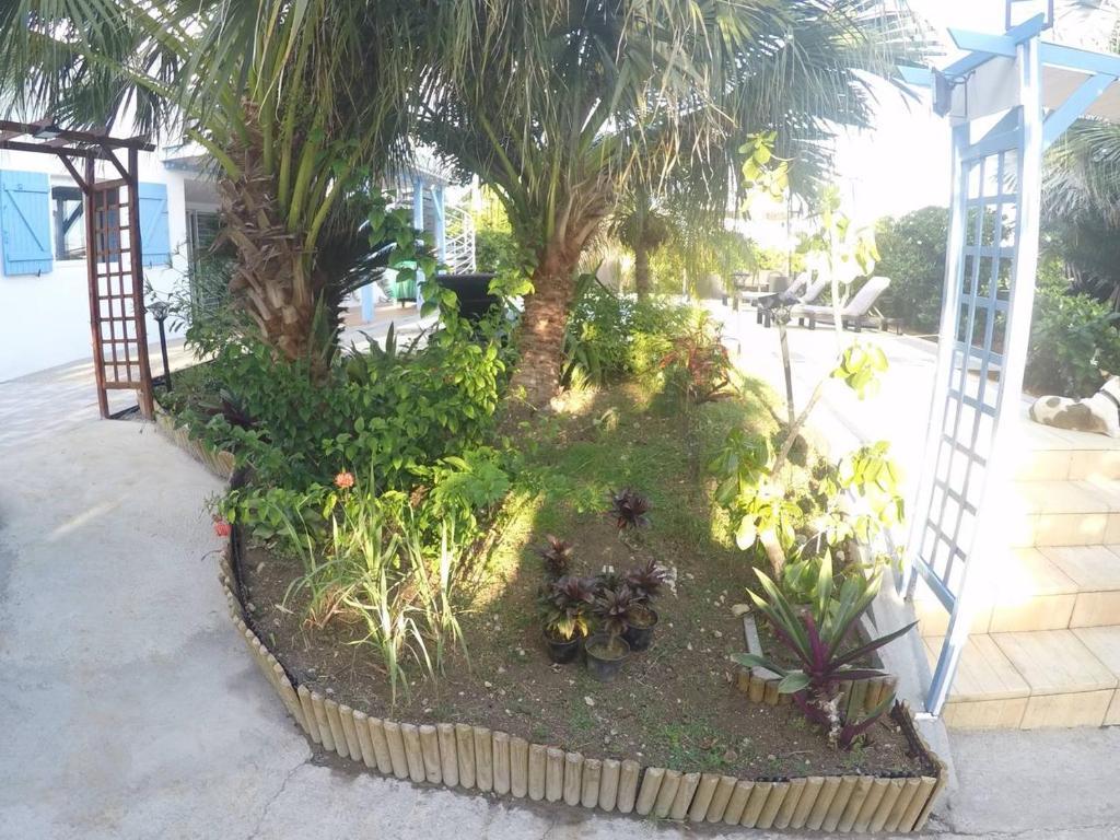 Departamento Loft Albatros (Martinica Le Vauclin)