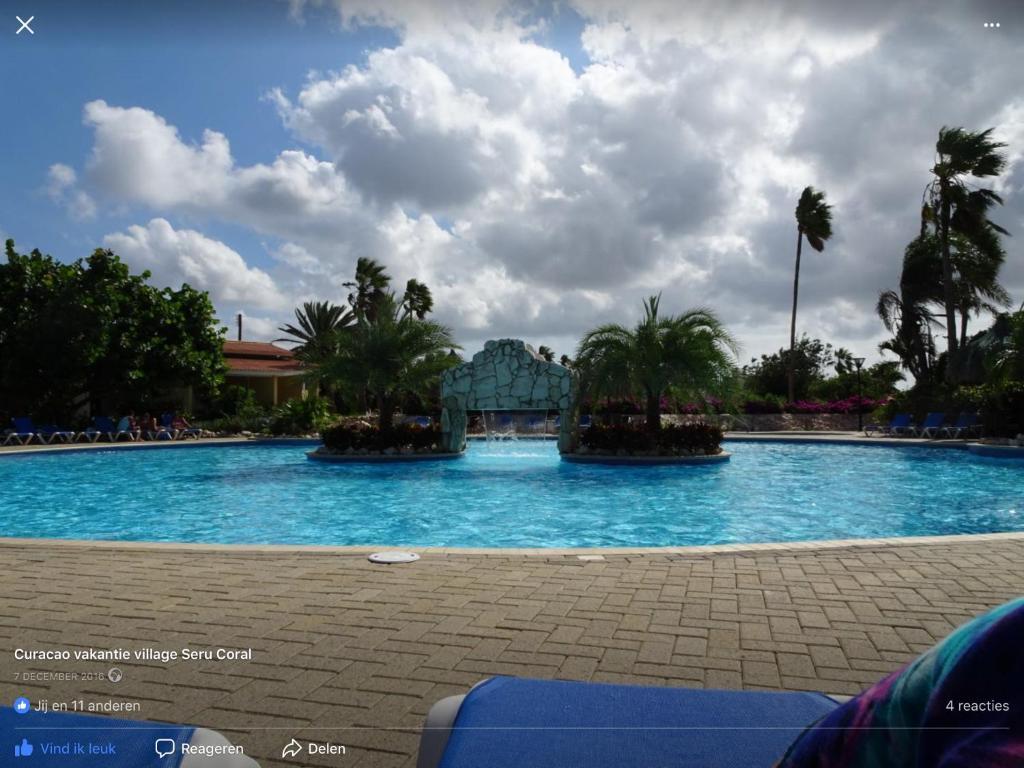 A piscina localizada em Droomstudio seru coral 32 ou nos arredores