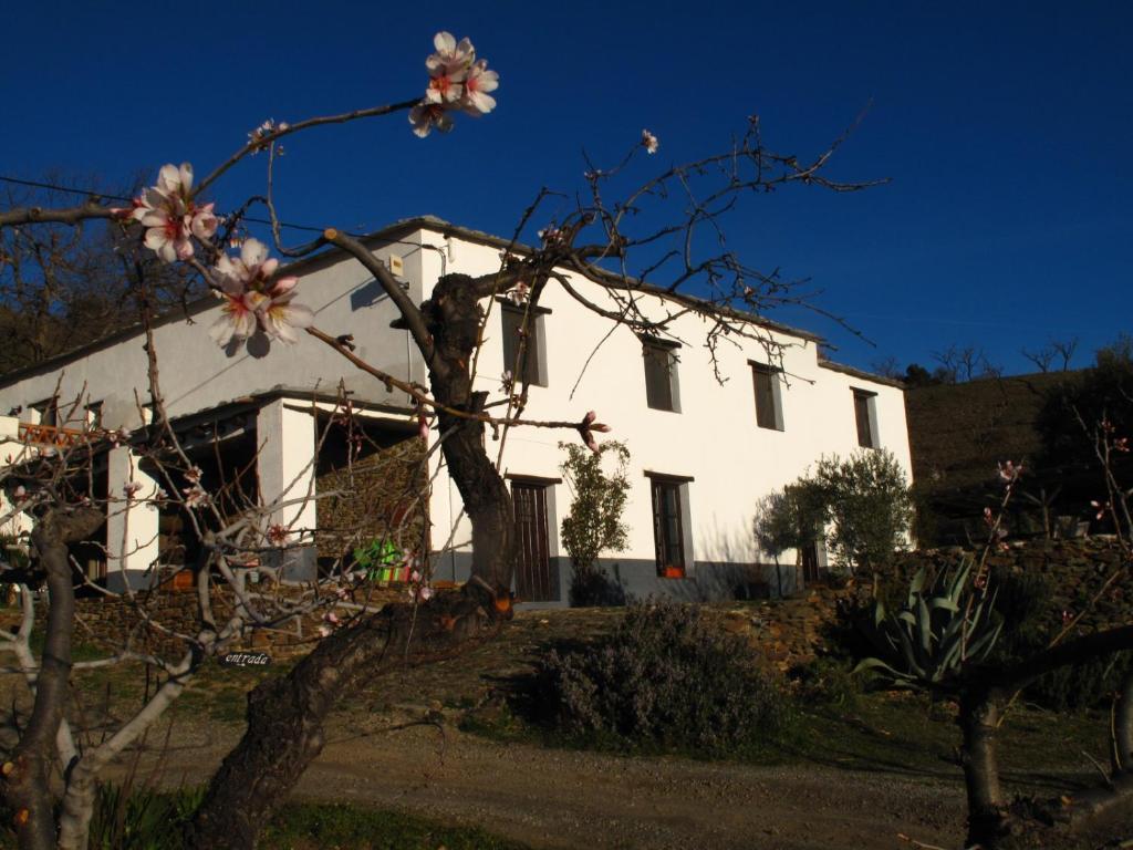 Casa Rural El Paraje de Berchules