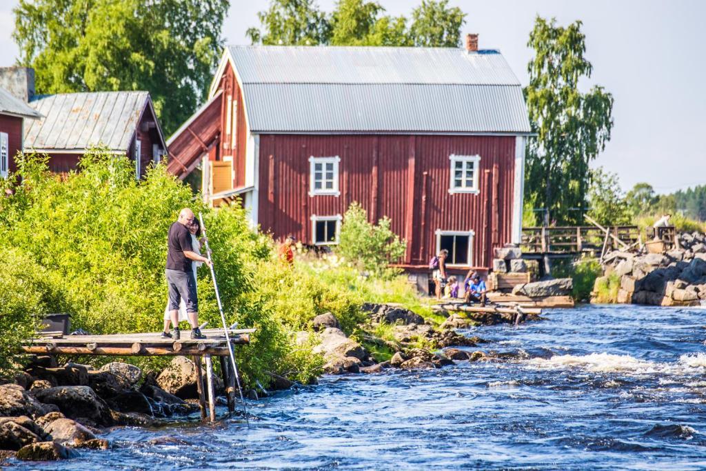 Whitefish grilling   Kukkolaforsen Turist & Konferens