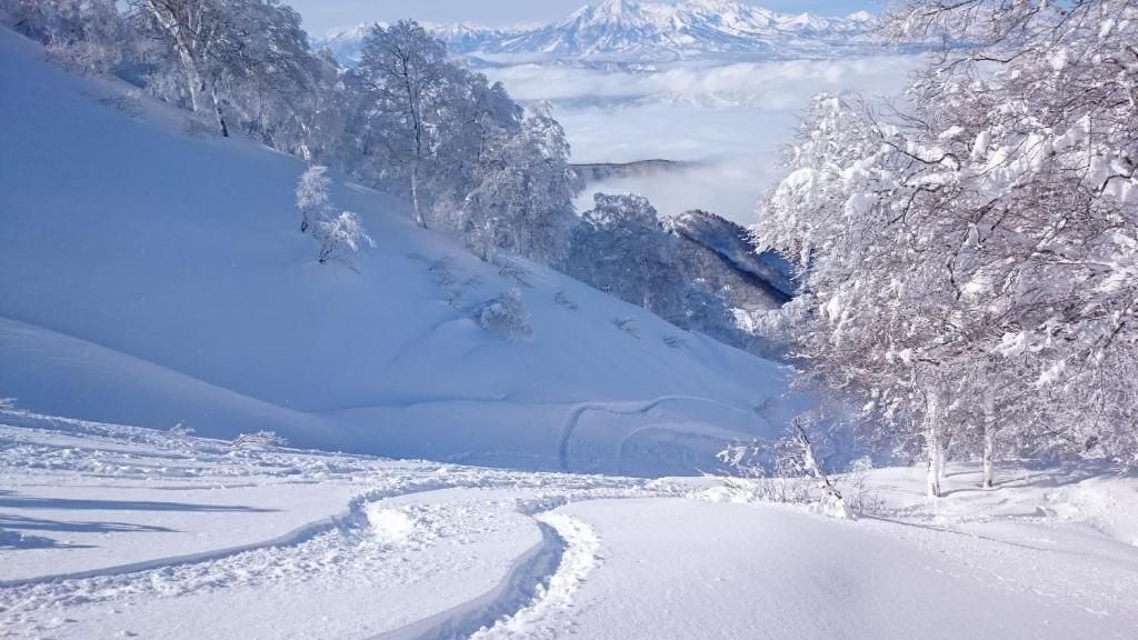 Nozawa Dream Central during the winter