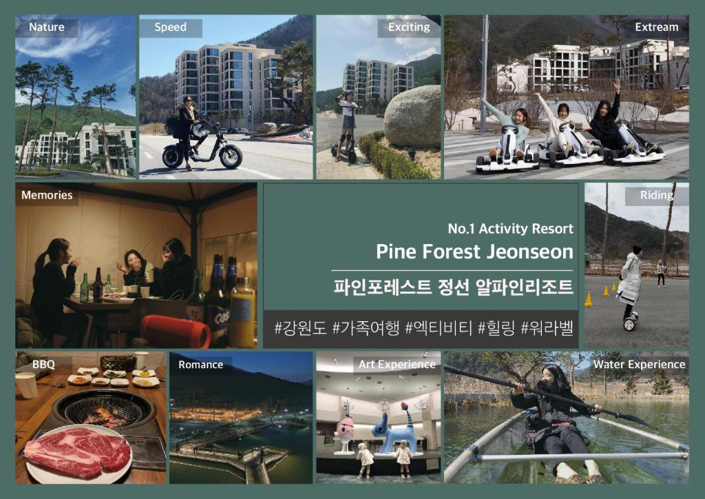 Pine Forest Jeongseon Alpine Resort