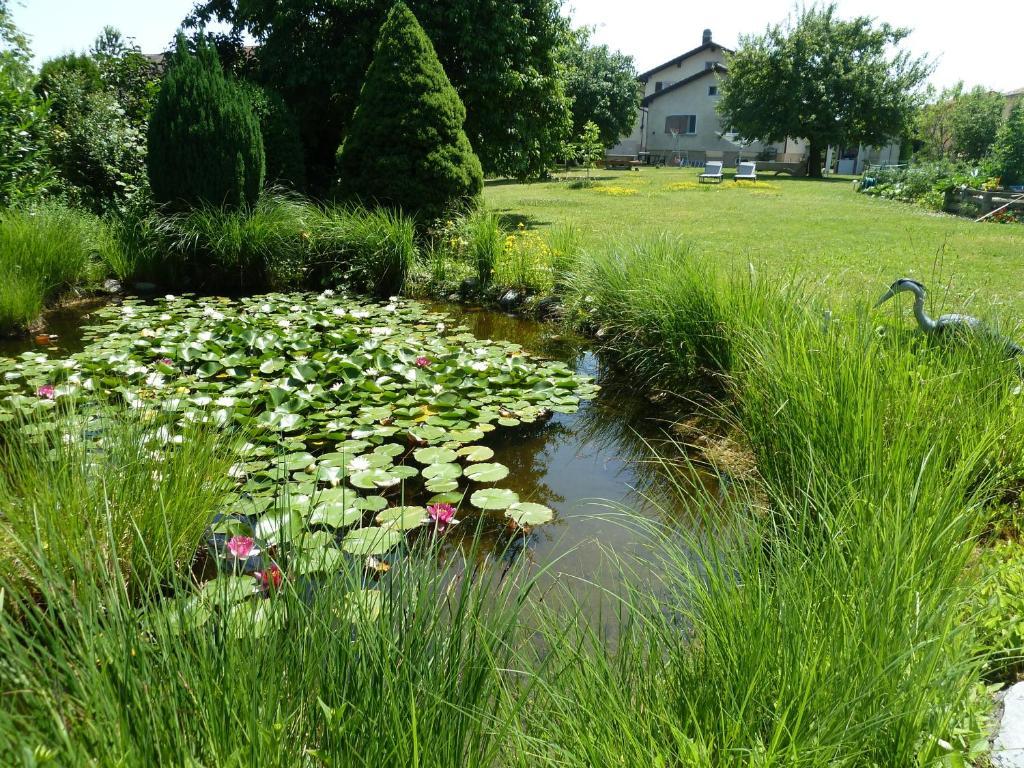 Ein Garten an der Unterkunft N. Blaise Chambres d'Hôtes