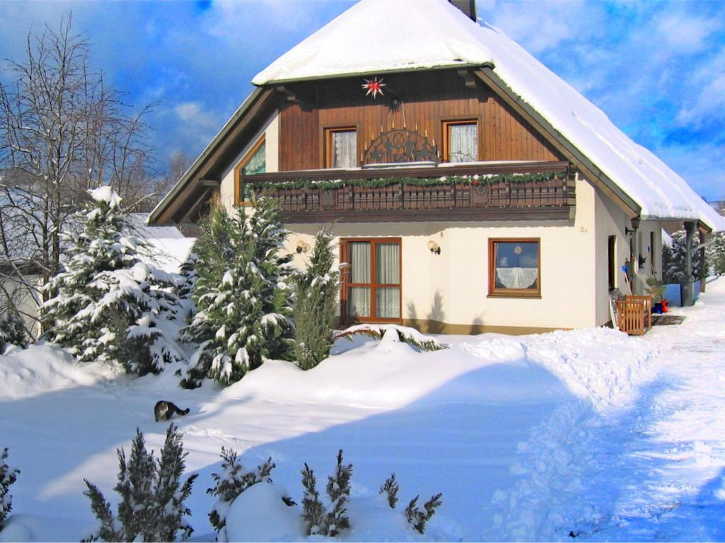 Beautiful Apartment in Pohla Saxony near Ski Area during the winter