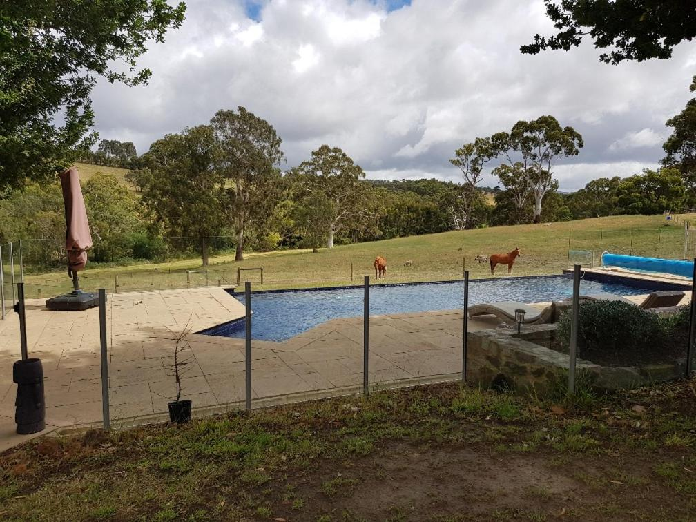 The swimming pool at or near The Poolhouse