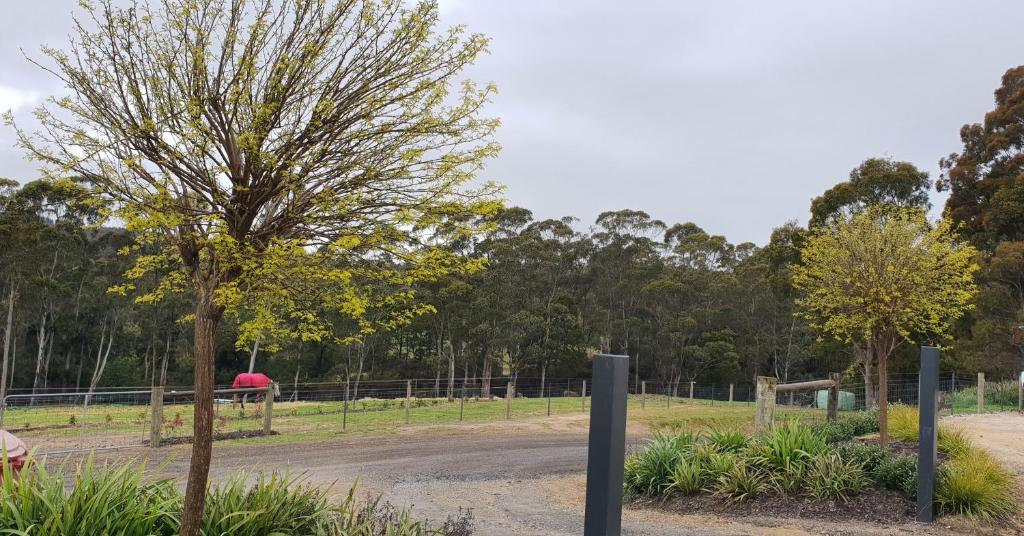 A garden outside Lockleigh Park