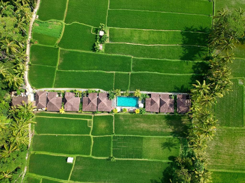 A bird's-eye view of Pajar House Ubud Suite & Villas